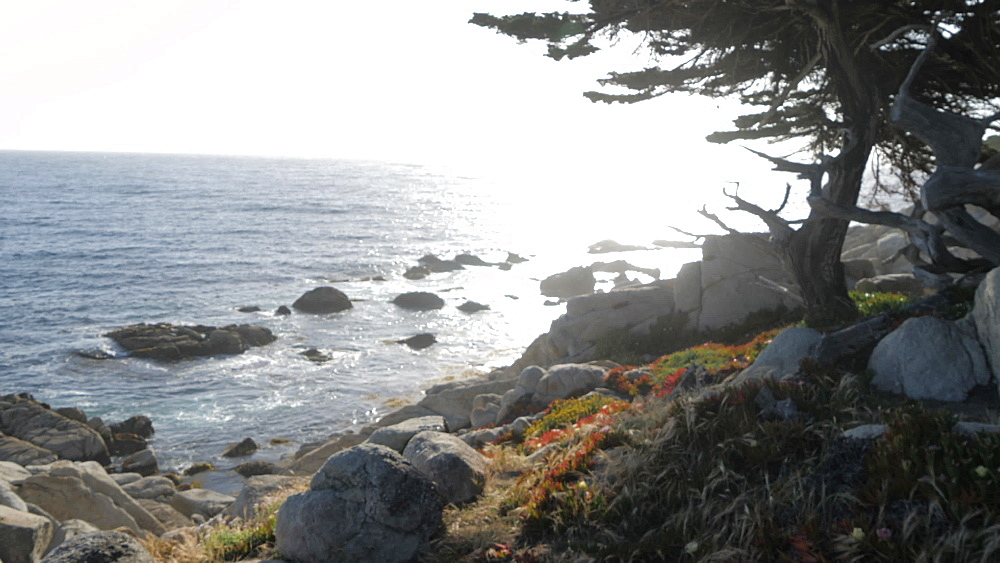 Pacific Ocean and rocks on coastline of 17 Mile Drive, Carmel, California, United States of America, North America