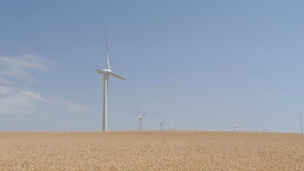 View of wind farm near Moccasin, California, United States of America, North America