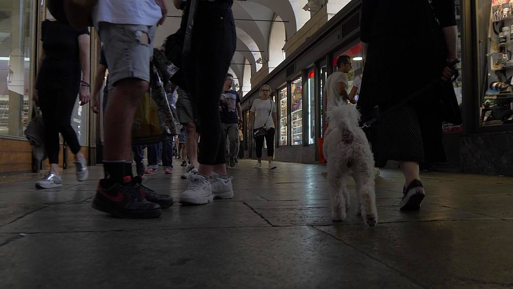Low tracking shot of people shopping, Turin, Piedmont, Italy, Europe