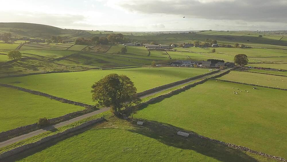 Drone shot of fields and dry stone walls near Wardlow, Peak District National Park, Derbyshire, England, UK, Europe