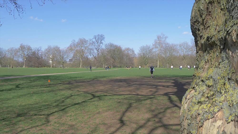 Hyde Park in springtime, London, England, United Kingdom, Europe