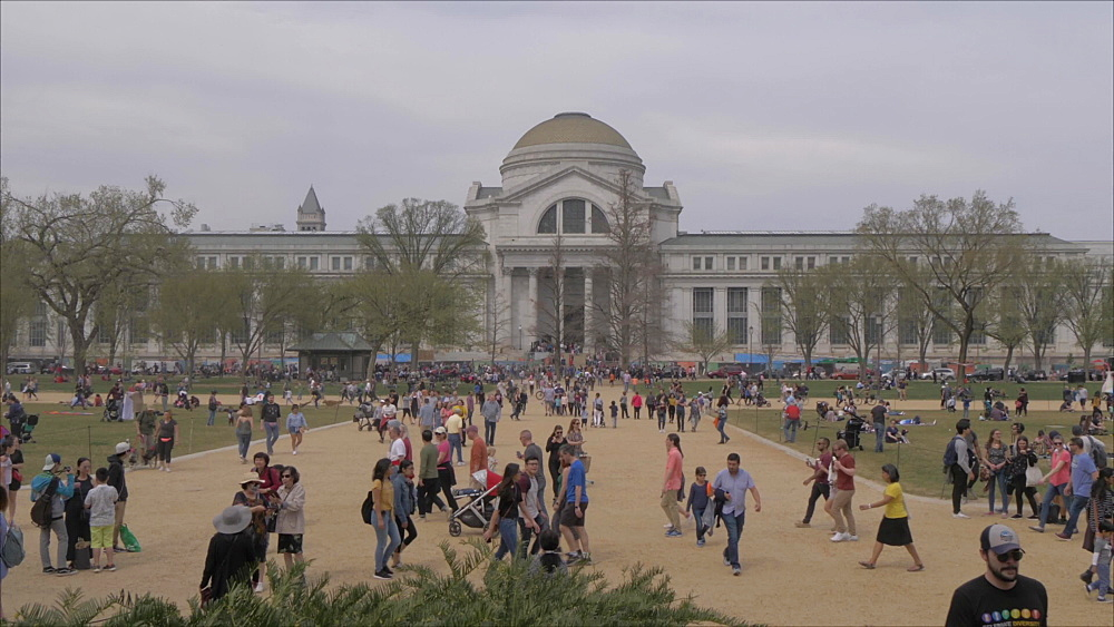 Smithsonian National Museum of Natural History on National Mall, Washington DC, United States of America, North America