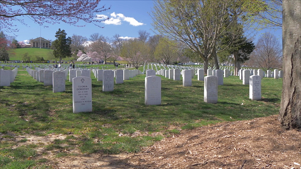 Roaming shot of military grave stones in Arlington National Cemetery during springtime, Washington DC, District of Columbia, USA