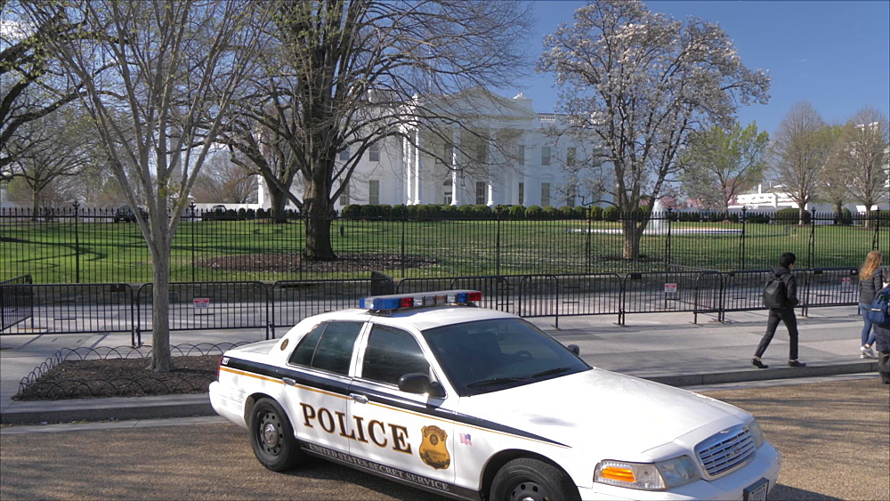 Crane shot of police car and White House and cherry blossom, Washington DC, District of Columbia, USA, North America