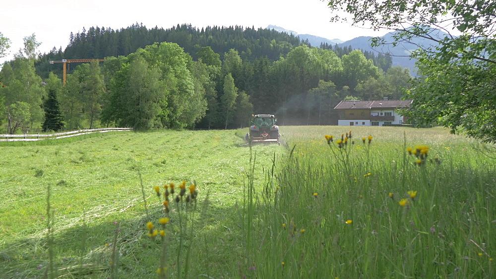 Tractor cutting hay near Kitzbuhel, Kitzbuhel, Tyrol, Austrian Alps, Austria, Europe