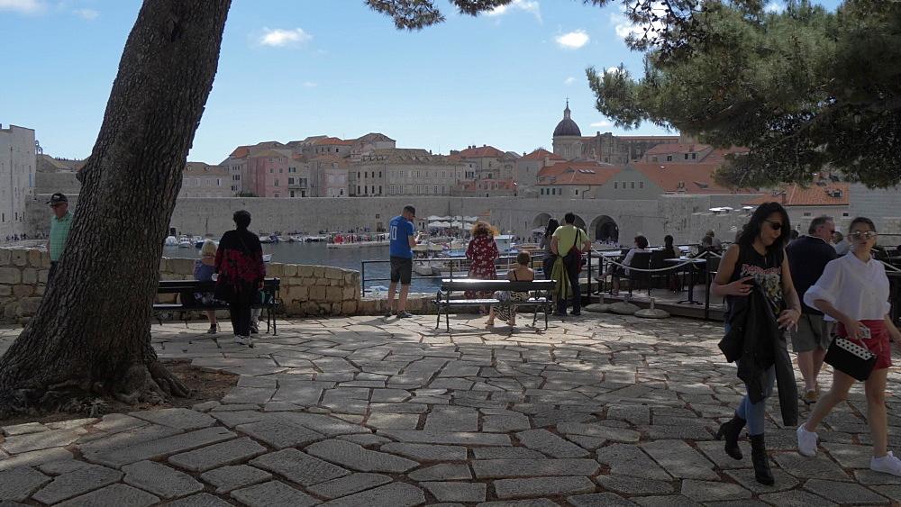 People looking at Dubrovnik Old Town Harbour, UNESCO World Heritage Site, Dubrovnik, Dubrovnik Riviera, Croatia, Europe