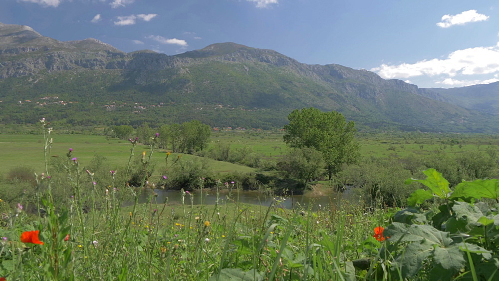 Landscape and scenery near Sokol Tower on a sunny spring day, Dunave, Croatia, Europe