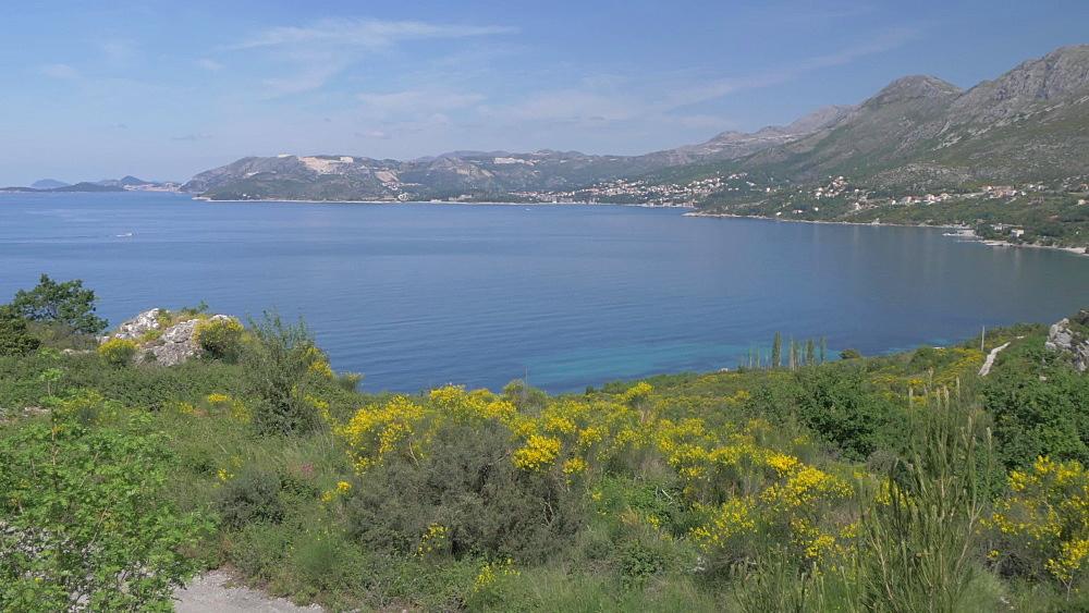 Bay overlooking Dubrovnik near Cavtat, Dubrovnik Riviera, Croatia, Europe