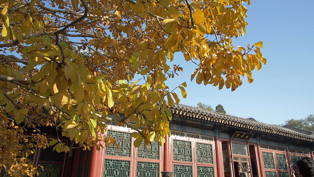 Temple in The Summer Palace, UNESCO World Heritage Site, Beijing, People's Republic of China, Asia