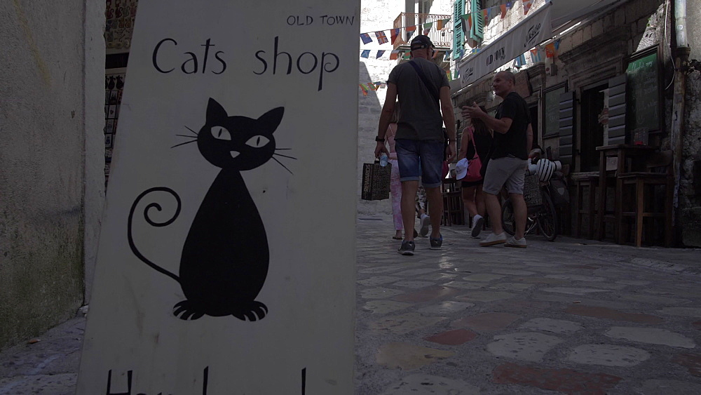 Cats of Kotor sign and narrow street in Old Town of Kotor, UNESCO World Heritage Site, Montenegro, Europe