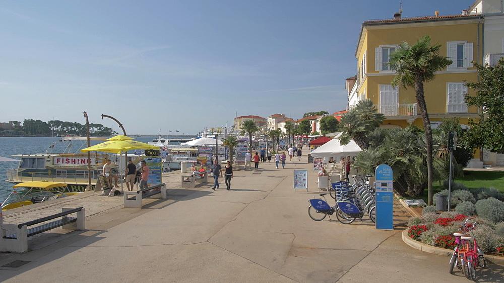 Harbour boats and the promenade, Porec, Istra, Adriatic Sea, Croatia, Europe
