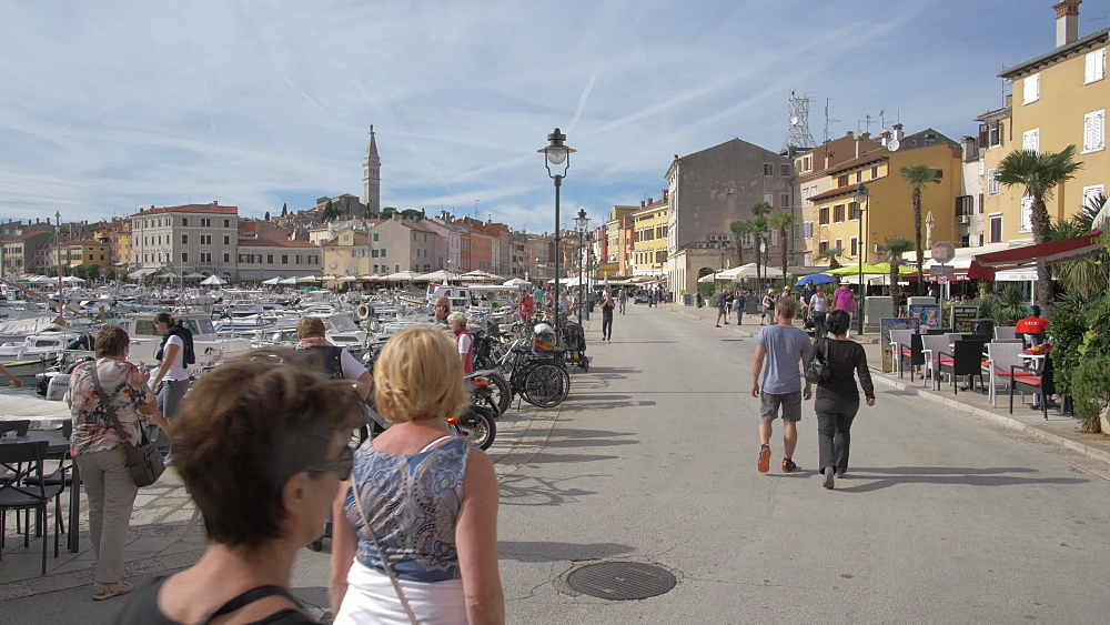 Harbour and Cathedral of St. Euphemia in the old town, Rovinj, Istria County, Croatia, Europe