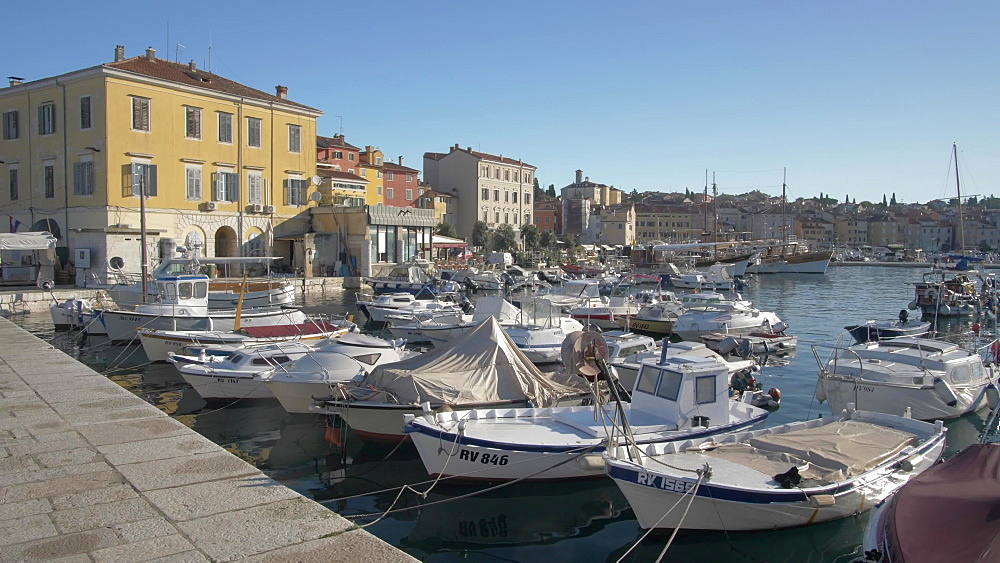 Harbour and the old town on sunny day, Rovinj, Istria County, Croatia, Europe