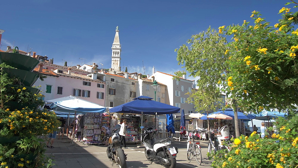 Market and Cathedral of St. Euphemia in the old town on sunny day, Rovinj, Istria County, Croatia, Europe
