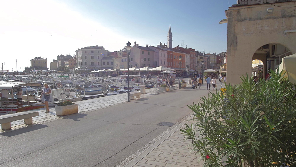 Harbour and Cathedral of St. Euphemia, Rovinj, Istria County, Croatia, Europe