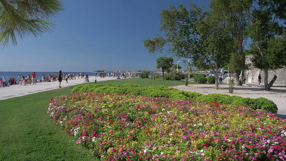 Gardens, promenade and Adriatic Sea, Zadar, Zadar County, Dalmatia region, Croatia, Europe