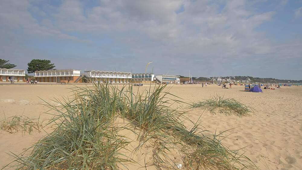 Pan shot of sand dunes and Sandbanks Beach, Poole, Dorset, England, United Kingdom, Europe
