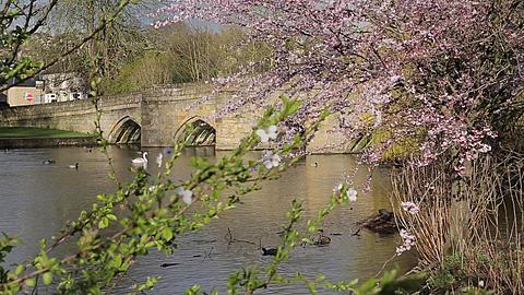 River Wye & Bridge, Bakewell, Derbyshire, England, Uk, Europe