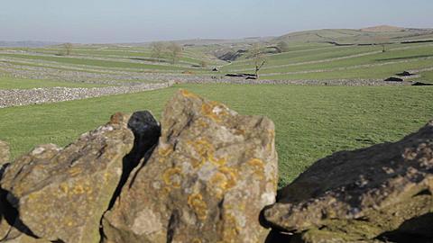 Dry Stone Walls at Litton, Derbyshire, England, Uk, Europe