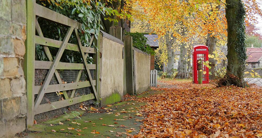 Autumn Leaves & Red Telephone Box at Teversal, Nottinghamshire, England, United Kingdom, Europe