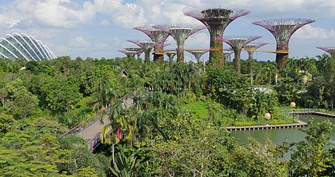 Gardens by the Bay, Singapore, South Asia, Asia