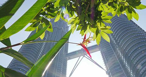 Kuala Lumpur City Centre Park, Kuala Lumpur, Malaysia, South East Asia, Asia  - 844-8730