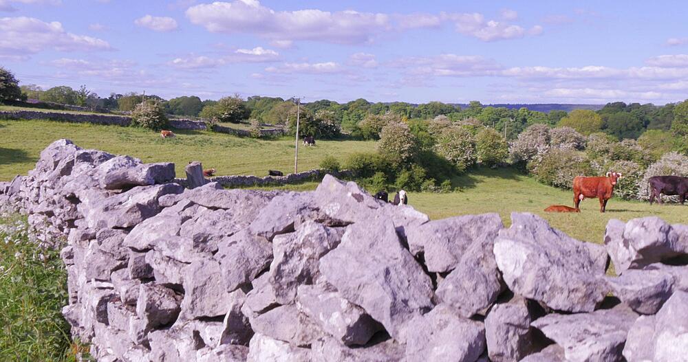 Dry Stone Walls near Youlgrave, Derbyshire Dales, Derbyshire, England, UK, Europe