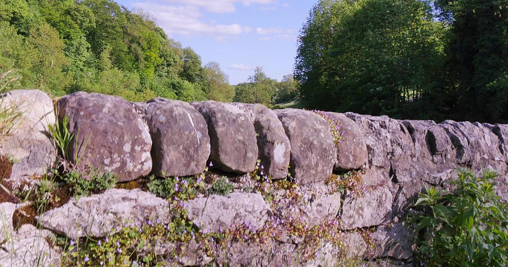 Dry Stone Bridge over River Wye near Milldale, Derbyshire Dales, Derbyshire, England, UK, Europe
