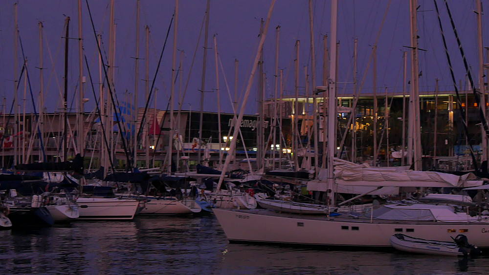 Port Vell de Barcelona, Catalonia, Spain, Europe - 844-9573
