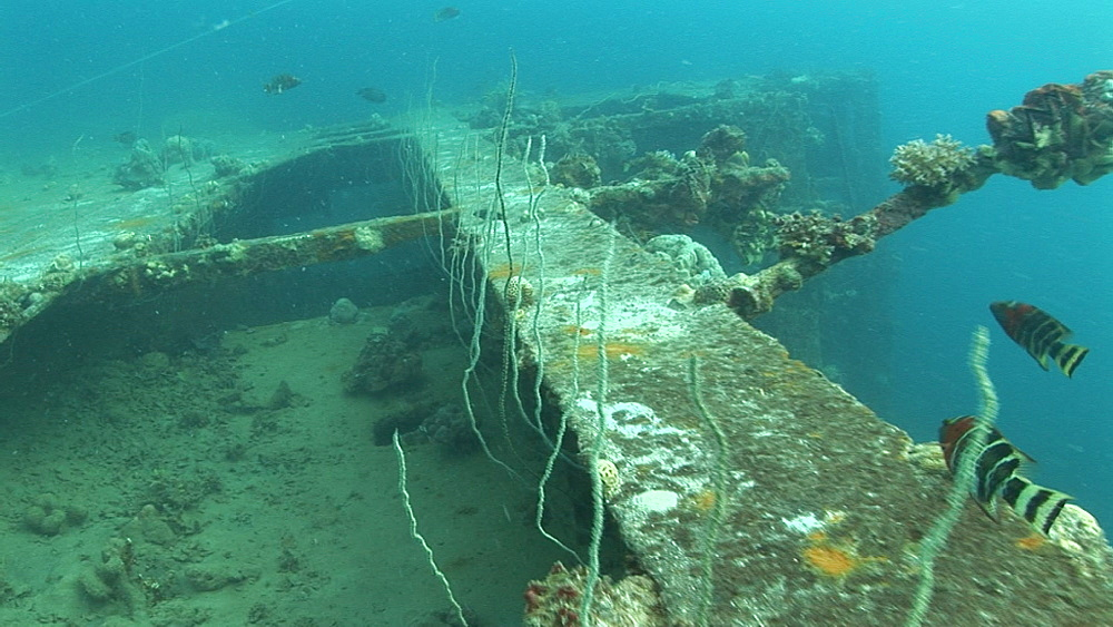Wreck of ship, track over eerie rusting and encrusted wreck.  Western Pacific - 981-288