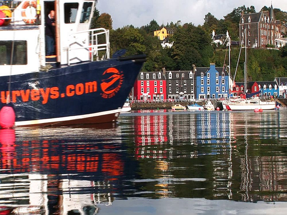 Harbour front, Sea Life Survey ship. Tobermory. Mull. UK. 23/07/08 - 988-381