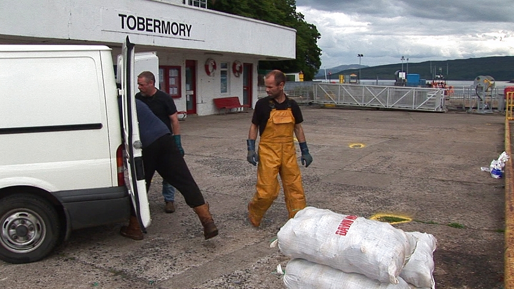Scallops in bags being loaded into van. Tobermory. Mull. Scotland - 988-427