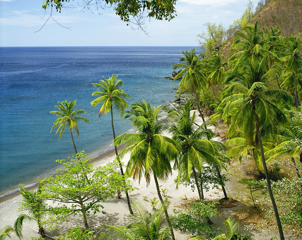 Anse Chastanet, near Soufriere, St. Lucia, Windward Islands, West Indies, Caribbean, Central America