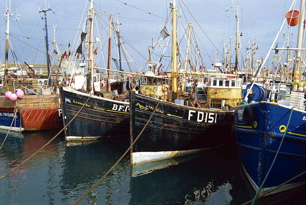 Fishing boats, Newlyn, Cornwall, England, United Kingdom, Europe