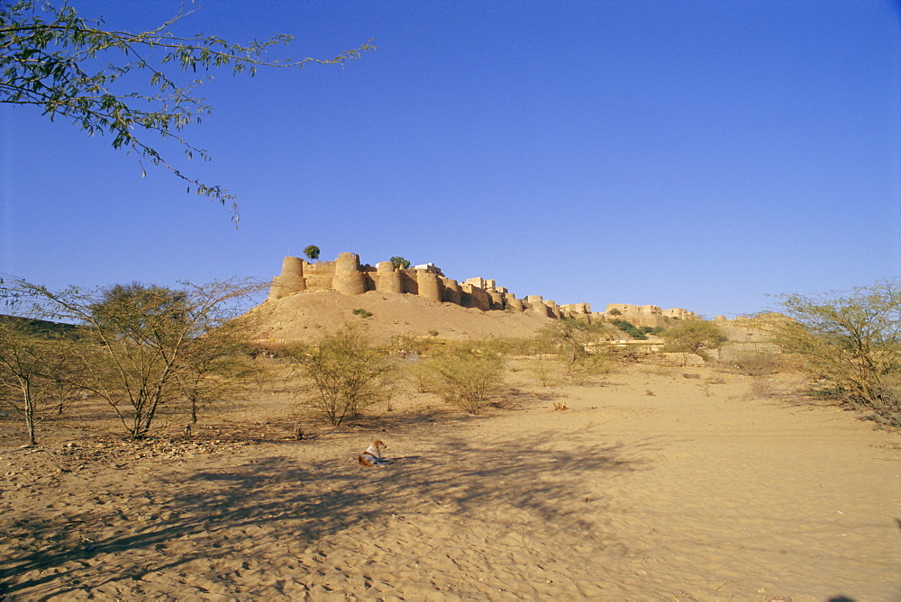 View of the fortified old city of Jaisalmer in the Thar Desert, Rajasthan, India