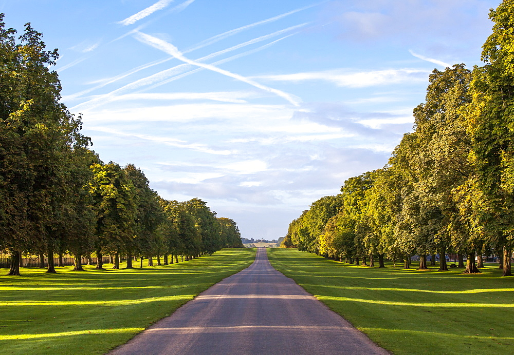 The Long Walk, Windsor, Berkshire, England, United Kingdom, Europe - 10-423