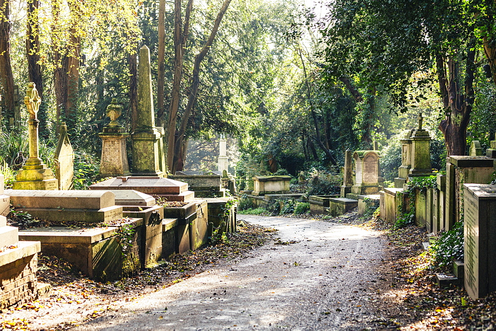 Highgate Cemetery west, London, England, United Kingdom, Europe - 10-443