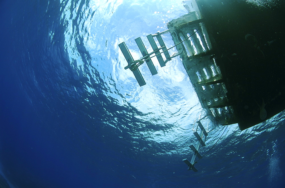 Underwater view of a boat. Compasspoint, Caymans. - 1022-72
