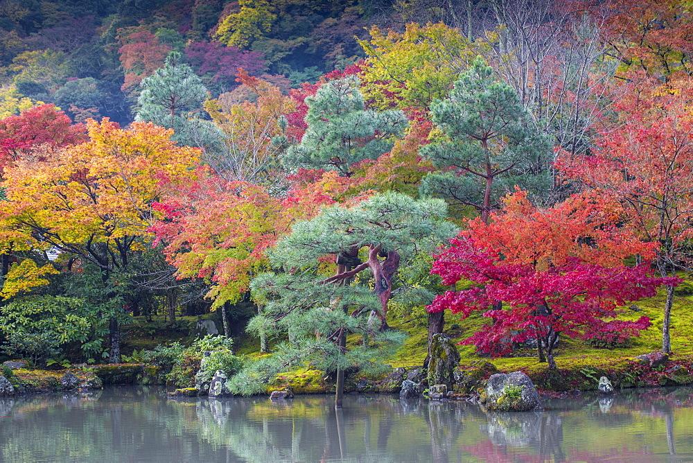 Japan, Kyoto, Arashiyama, Tenryuji Temple, Sogen Garden - a World Culural Herage site