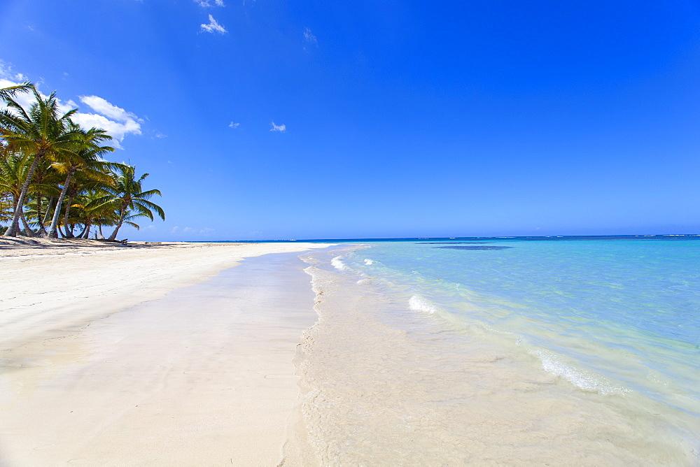 El Portillo Beach, Las Terrenas, Samana Peninsula, Dominican Republic, West Indies, Caribbean, Central America
