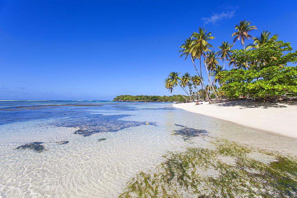 La Playita beach, Las Galleras, Samana Peninsula, Dominican Republic, West Indies, Caribbean, Central America