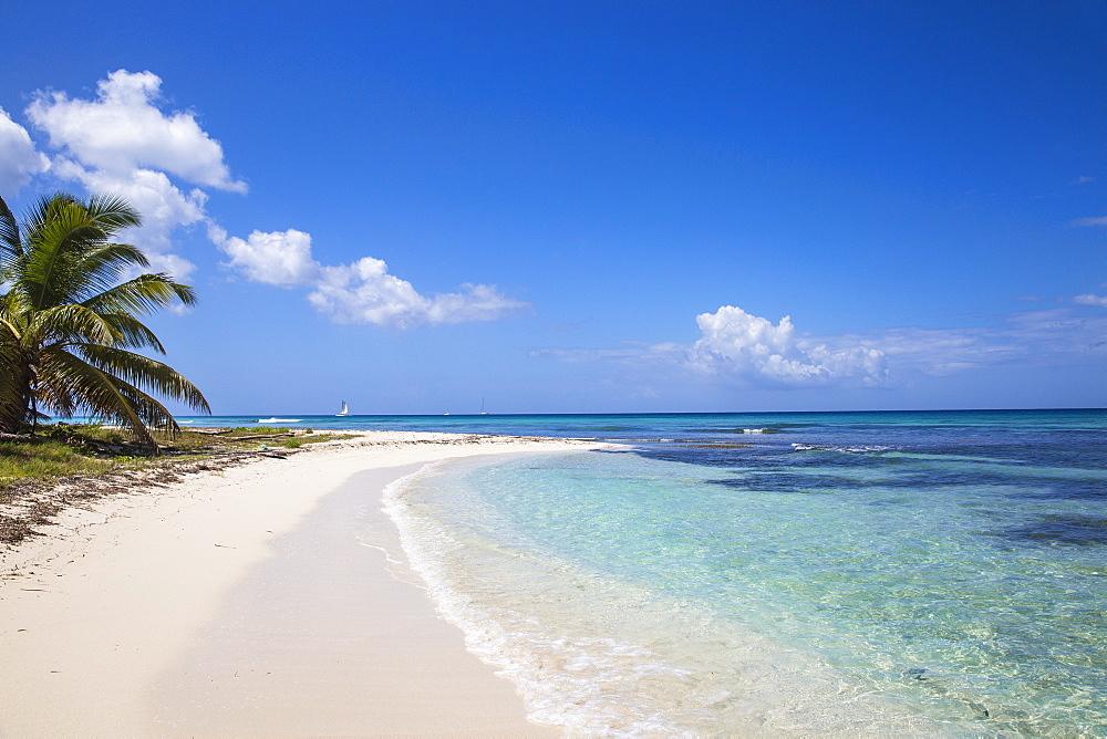 Catuano Beach, Saona Island, Parque Nacional del Este, Punta Cana, Dominican Republic, West Indies, Caribbean, Central America