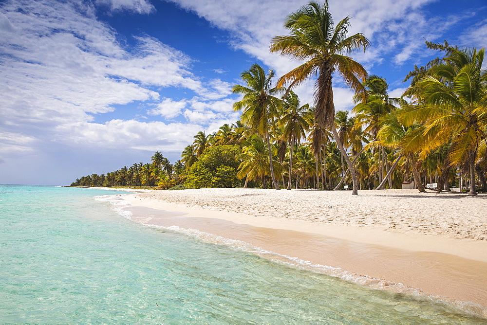 Canto de la Playa, Saona Island, Parque Nacional del Este, Punta Cana, Dominican Republic, West Indies, Caribbean, Central America