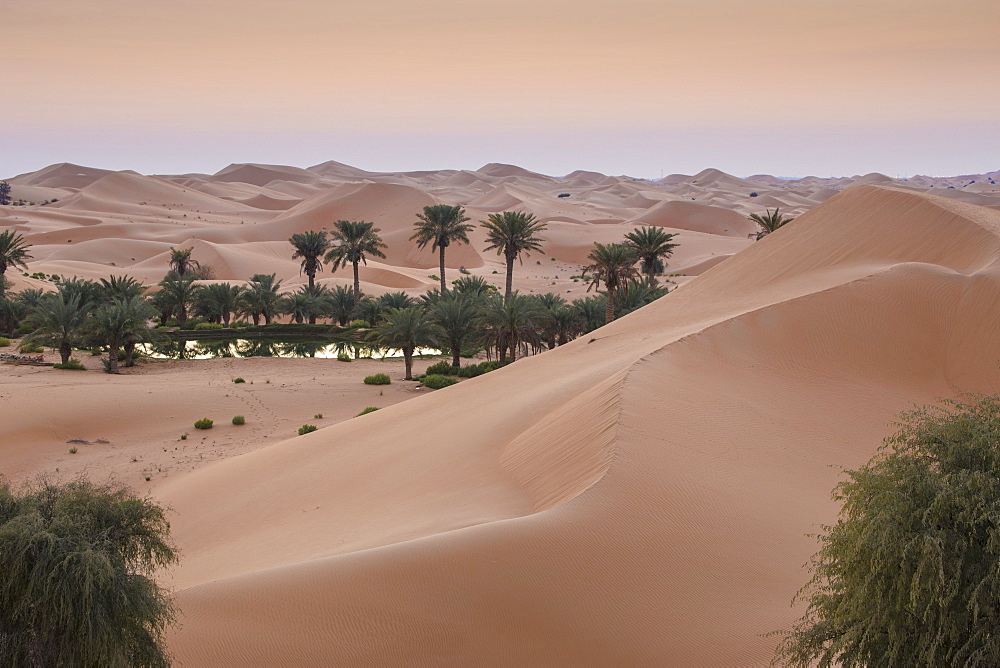 Remah Desert, Al Ain, Abu Dhabi, United Arab Emirates, Middle East