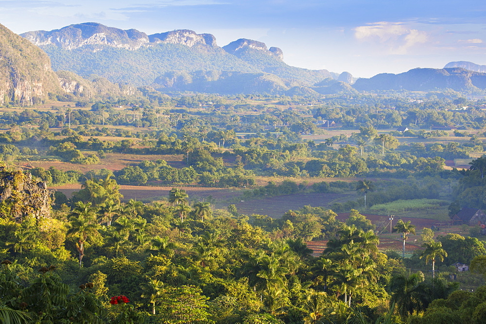 View of Vinales Valley, UNESCO World Heritage Site, Vinales, Pinar del Rio Province, Cuba, West Indies, Caribbean, Central America