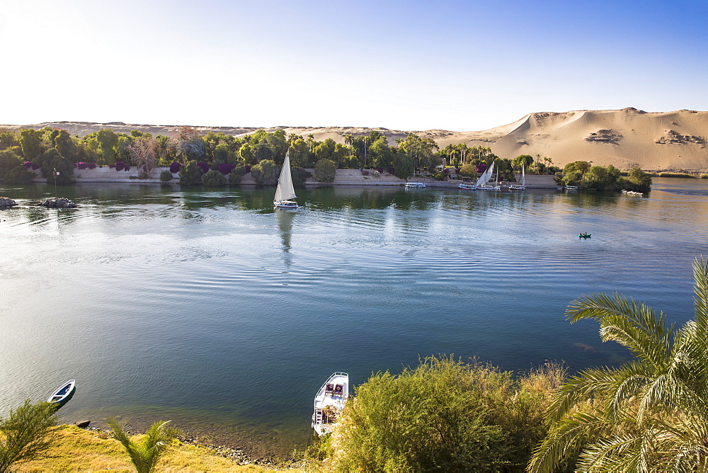 Egypt, Upper Egypt, Aswan, Elephantine Island, View of river Nile and the Botanical gardens on Kitchener Island