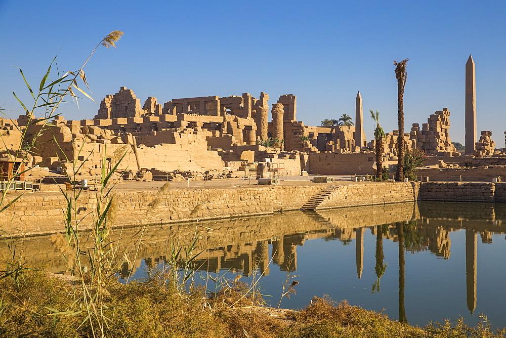 Egypt, Luxor, Karnak Temple, Sacred Lake - 1104-829