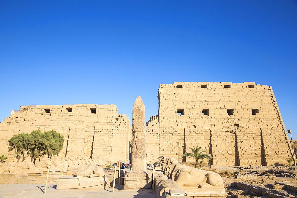 Egypt, Luxor, Luxor Temple, Avenue of Spinxes - 1104-837