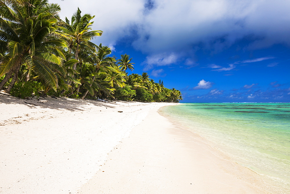 White sandy beach and palm trees on tropical Rarotonga Island, Cook Islands, South Pacific, Pacific