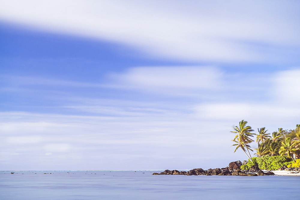 Palm tree long exposure, Muri, Rarotonga, Cook Islands, South Pacific, Pacific